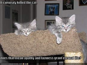 If curiosity killed the cat,  does that mean apathy and laziness grant eternal life?