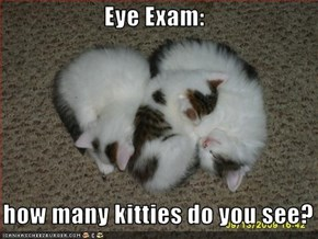 Eye Exam:     how many kitties do you see?