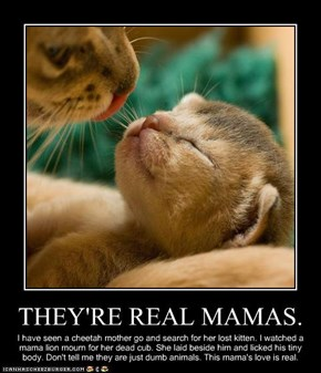 THEY'RE REAL MAMAS.