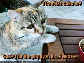 I Can Haz Cake to?  See? I do the puppy eyes...Pweaze?