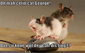 Oh mah celin cat George!   Does u knoe wut dey call dis fing??