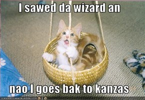 I sawed da wizard an  nao I goes bak to kanzas