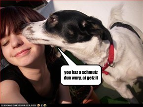 you haz a schmutz dun wury, ai getz it