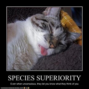 SPECIES SUPERIORITY