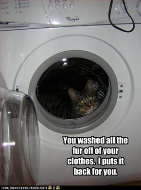 You washed all the fur off of your clothes.  I puts it back for you.