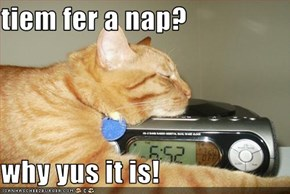 tiem fer a nap?  why yus it is!