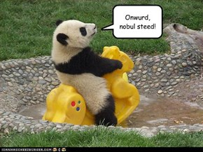 Onwurd,  nobul steed!