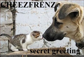 CHEEZFRENZ  secret greeting