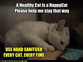 A Healthy Cat Is a HappyCat Please help me stay that way