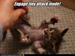 Engage tiny attack mode!