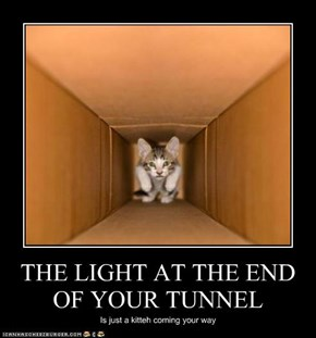 THE LIGHT AT THE END OF YOUR TUNNEL