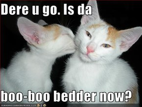 Dere u go. Is da  boo-boo bedder now?