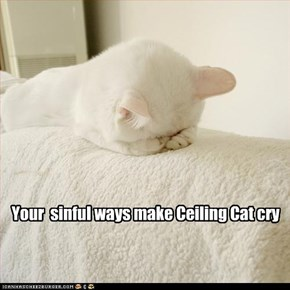 Your  sinful ways make Ceiling Cat cry