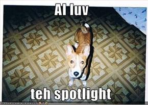 AI luv  teh spotlight