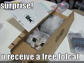surprise!  u receive a free lolcat