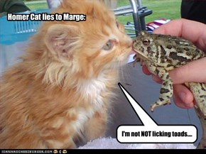 I'm not NOT licking toads....