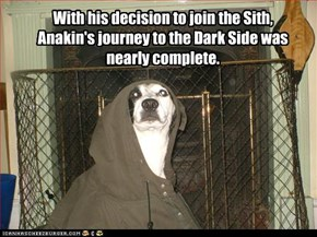 With his decision to join the Sith, Anakin's journey to the Dark Side was nearly complete.