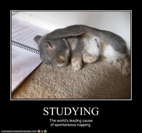 STUDYING