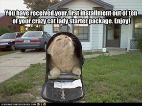 You have received your first installment out of ten of your crazy cat lady starter package. Enjoy!