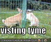 visting tyme