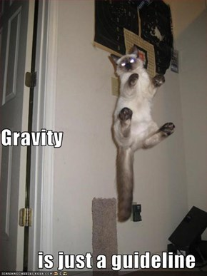 Gravity is just a guideline