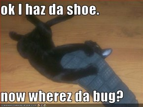 ok I haz da shoe.  now wherez da bug?