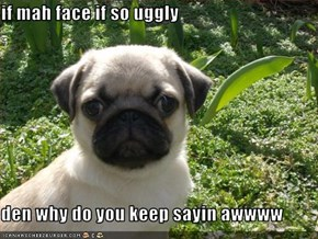 if mah face if so uggly  den why do you keep sayin awwww