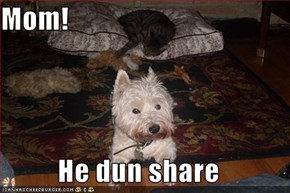 Mom!  He dun share