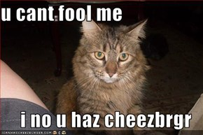u cant fool me  i no u haz cheezbrgr