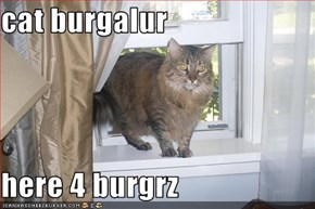 cat burgalur  here 4 burgrz