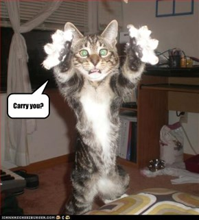 Carry you?