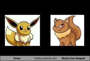 Eevee Totally Looks Like Wocky from Neopets