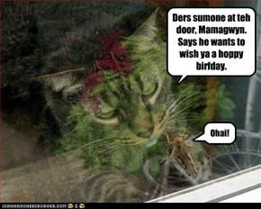 Ders sumone at teh door, Mamagwyn. Says he wants to wish ya a hoppy birfday.