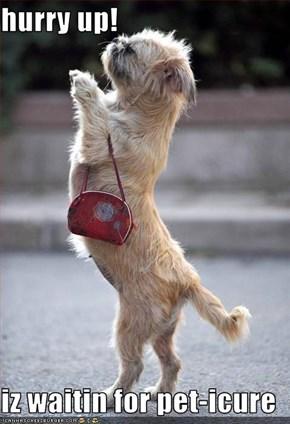 hurry up!  iz waitin for pet-icure