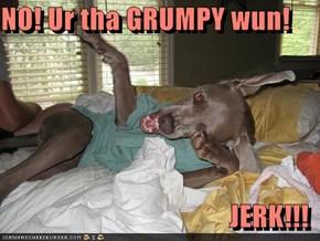 NO! Ur tha GRUMPY wun!   JERK!!!