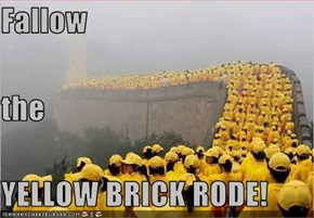 Fallow the  YELLOW BRICK RODE!