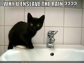 WHY U ENSLAVE THE RAIN ????