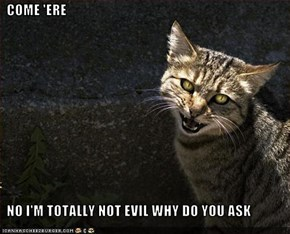 COME 'ERE    NO I'M TOTALLY NOT EVIL WHY DO YOU ASK