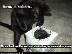 Nows listen here...