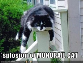 'splosion of MONORAIL CAT