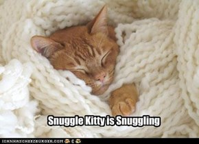 Snuggle Kitty is Snuggling