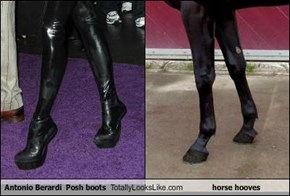 Antonio Berardi  Posh boots Totally Looks Like horse hooves