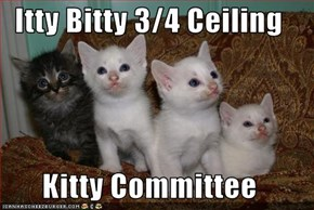 Itty Bitty 3/4 Ceiling  Kitty Committee