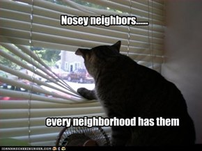 Nosey neighbors......