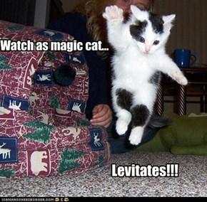 Watch as magic cat...