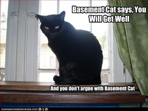 Basement Cat says, You Will Get Well