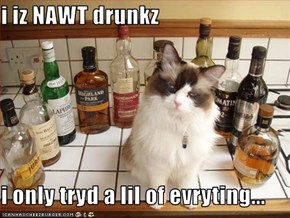 i iz NAWT drunkz  i only tryd a lil of evryting...