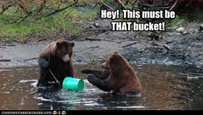 Hey!  This must be THAT bucket!