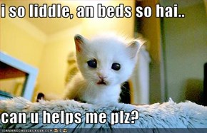 i so liddle, an beds so hai..  can u helps me plz?