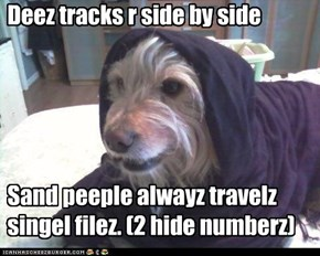 Deez tracks r side by side      Sand peeple alwayz travelz singel filez. (2 hide numberz)